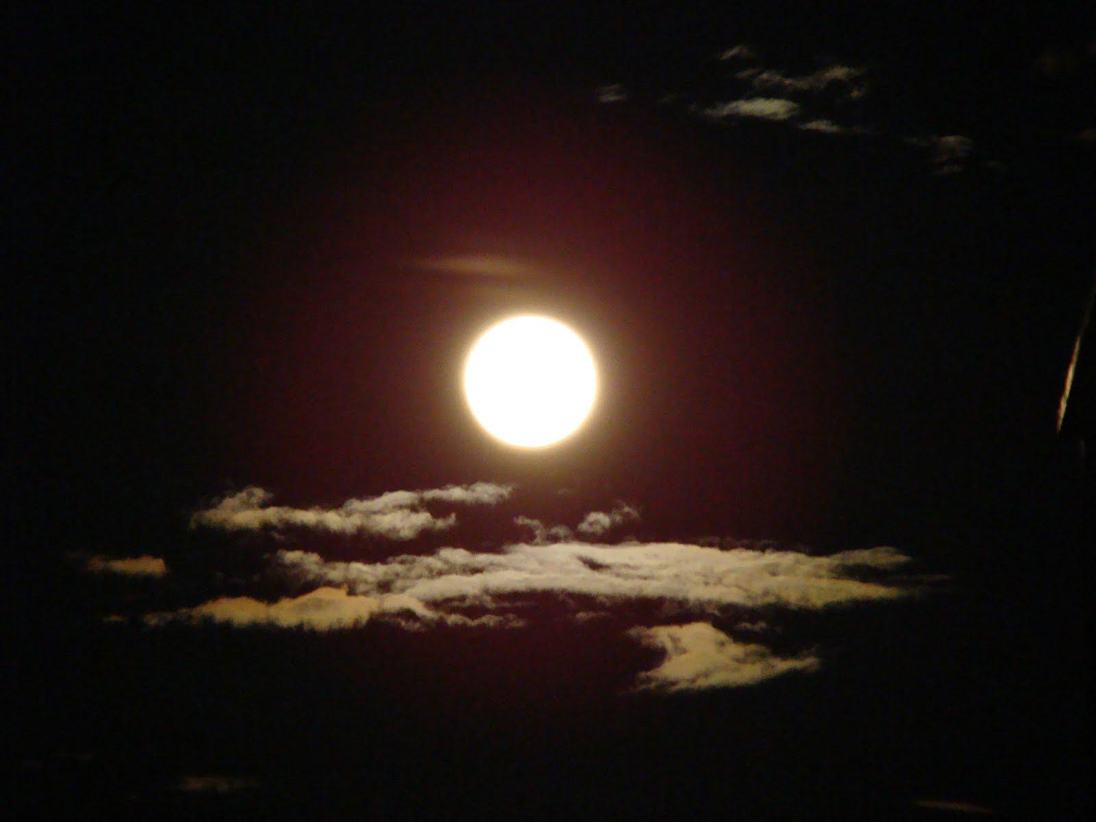 Fadhilat Bulan Syaaban