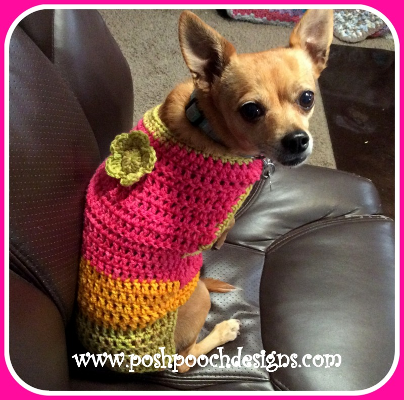 Posh Pooch Designs Dog Clothes: The Maggie Dog Sweater For