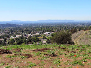 View southwest from Children's Forest near Colby Trail in Glendora