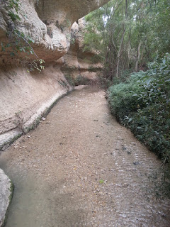 http://objetivo2050.blogspot.com.es/2015/11/imagenes-de-hidrologia.html