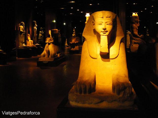 Museo Egizio, Torino, Italia, Museu d'arqueologia
