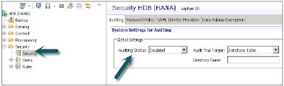 SAP HANA Auditing