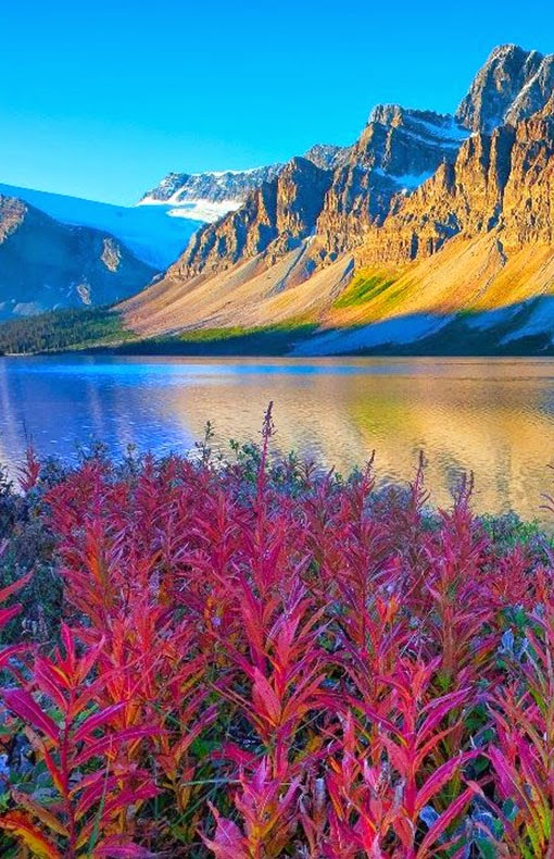 Greyhound and Brewster provide regular scheduled coaches that serve Banff and Lake Louise, departing from Calgary and points in British Columbia. Another option is to book one of the many guided bus tours that visit the park. Most of these will depart from Calgary or Vancouver.