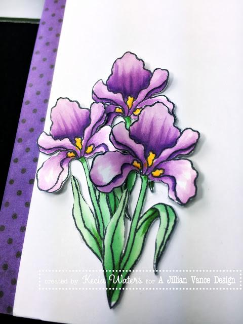 AJVD, Kecia Waters, Copic markers, iris