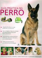 Guías Prácticas del Perro