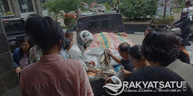 Ikan Layang Bebas Formalin Jadi Rebutan di Kantor Bupati Tana Toraja