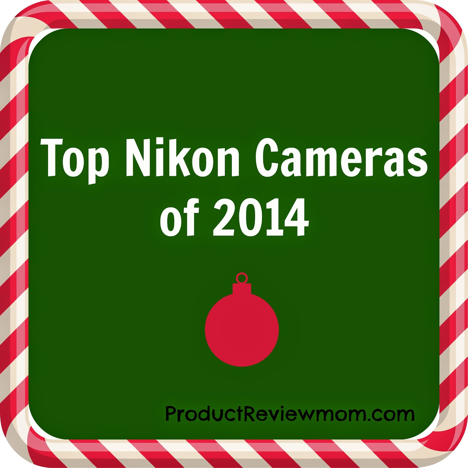 Top Nikon Cameras of 2014 #HolidayGiftGuide via www.productreviewmom.com