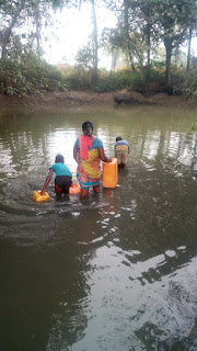 Check out the dirty pond people fetches cooking water in Enugu State.