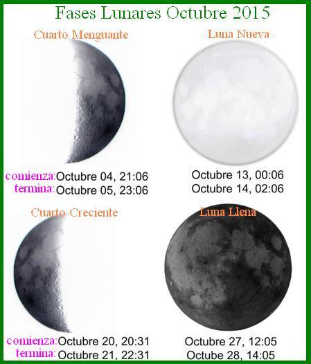 La dieta de la luna 2018 octubre 2015 for Calendario menguante