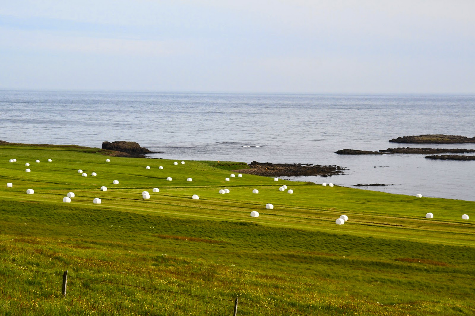 Visitar os FIORDES ORIENTAIS da Islândia - Seydisfjordur e os fiordes de leste   Islândia
