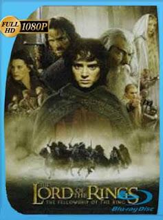 El Señor de los Anillos 1 (2001) HD [1080p] latino[GoogleDrive] DizonHD
