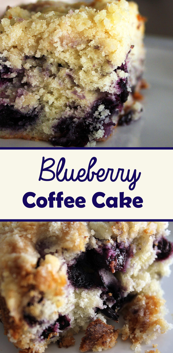 Recipe for Blueberry Coffee Cake by freshfromthe.com