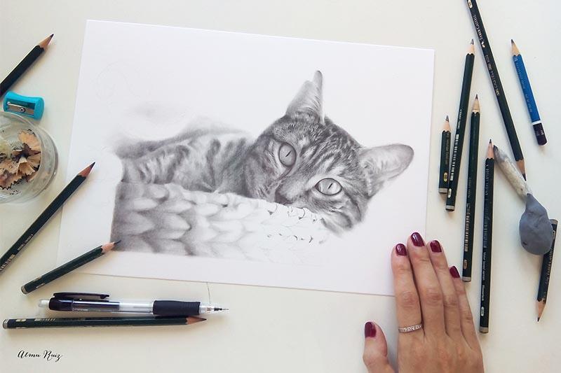 Dibujo a lápiz de tu mascota