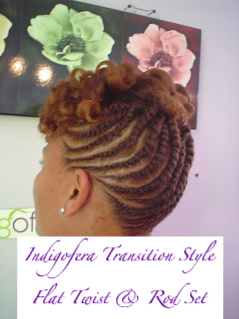 Indigofera Beauty Blog Natural Hair Style Flat Twist Updo With