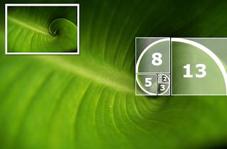 Calcular Fibonacci com Python