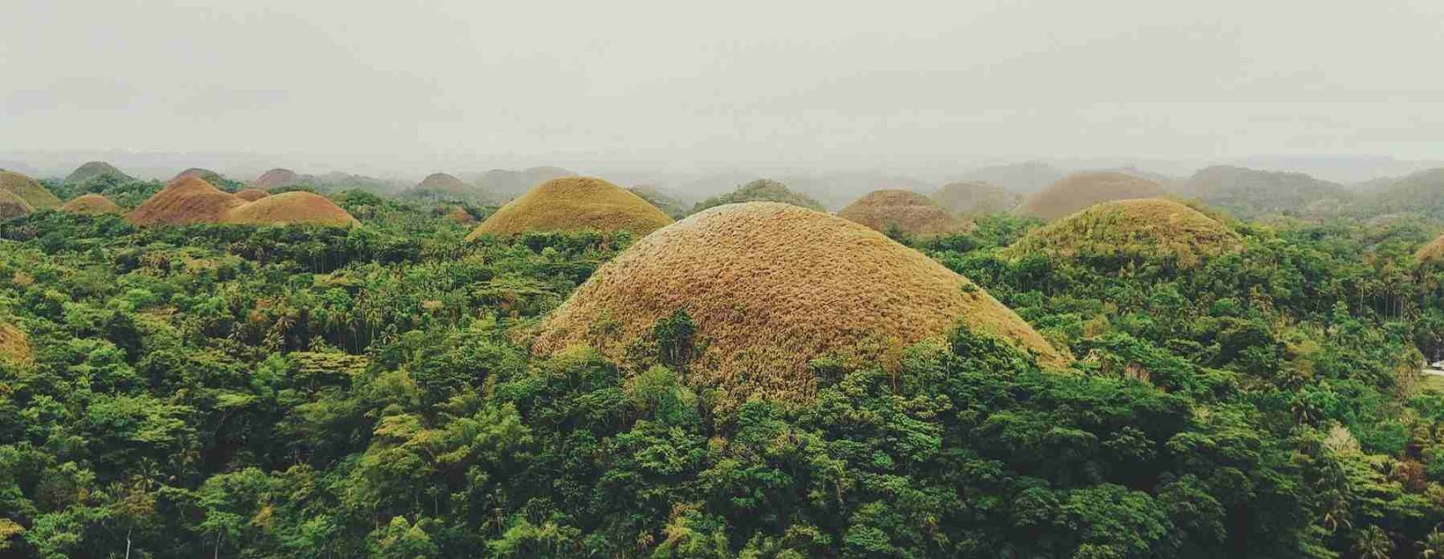 The iconic Chocolate Hills of Bohol