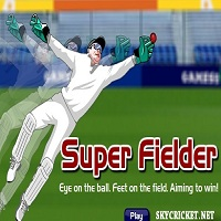 Play Super Fielder Cricket Game