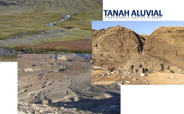ciri-ciri tanah aluvial