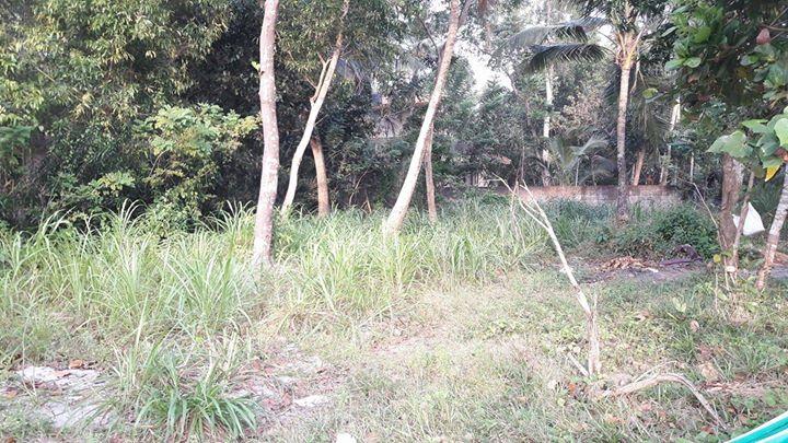 Land For Sale at Punnapra, Alappuzha, Kerala