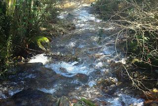 Río Nonaya en las inmediaciones de la fuente de Paín