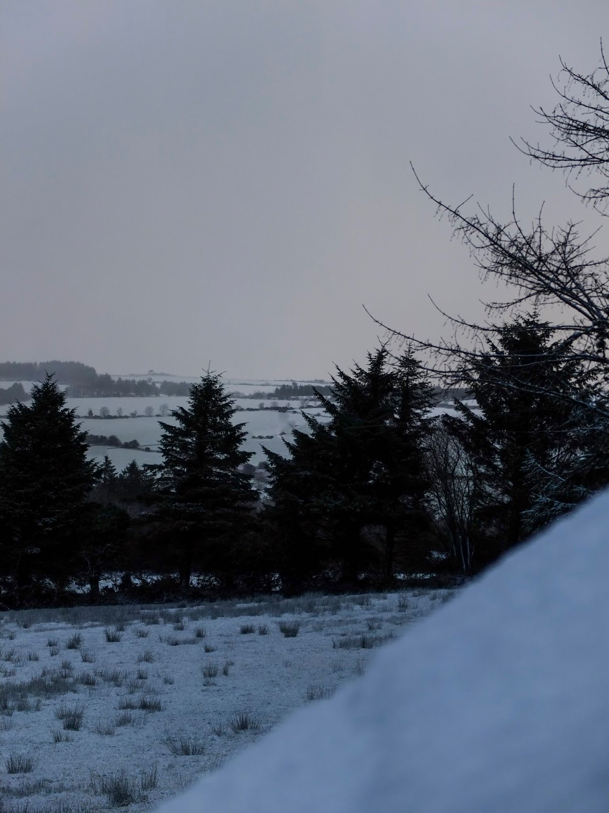 Grey tones of a landscape dusted with snow in North Cork.