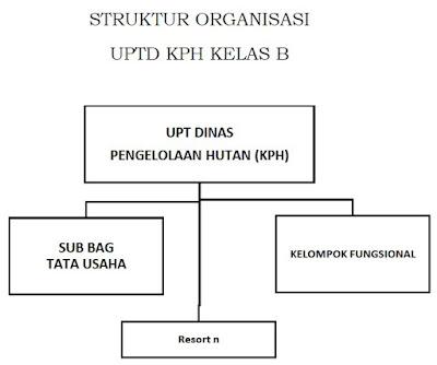 Struktur organisasi UPTD Kesatuan Pengelolaan Hutan (KPH) Kelas B