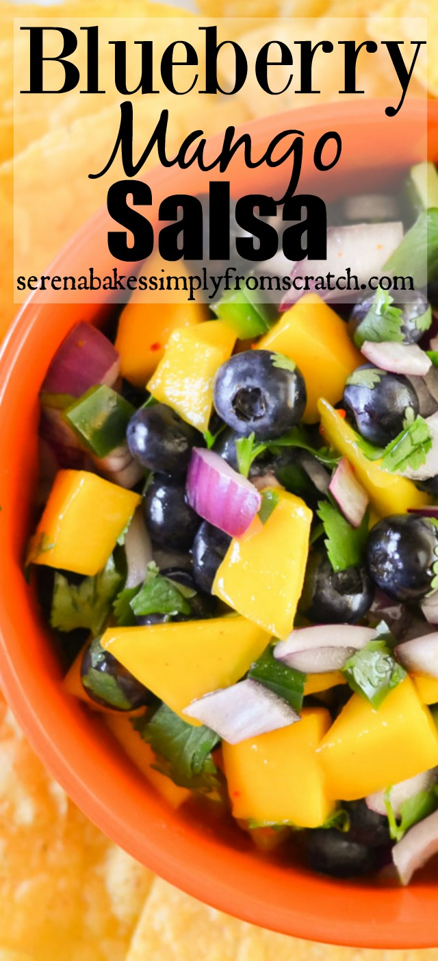 Blueberry Mango Salsa from serenabakessimplyfromscratch.com