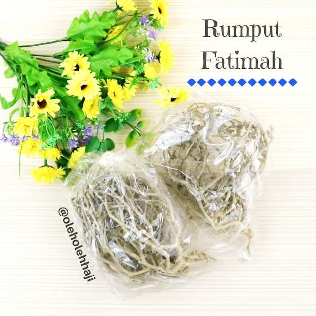 Rumput Fatimah, oleh oleh haji dan umroh, perlengkapan haji dan umroh.