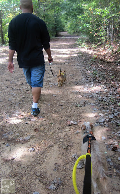Johnny, Jada, and Bailey hiking at Berry College
