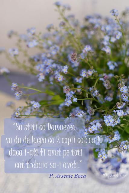 #citat Parintele #ArsenieBoca #floridenumauita