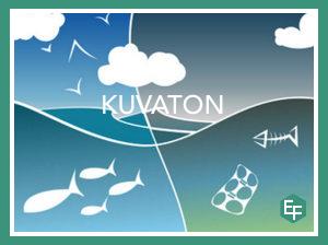 Levien, simpukoiden, järviruo'on ja mikrobien kasvatusta voidaan hyödyntää Itämeren tilan parantamisessa