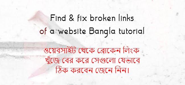 Find and fix broken links of a website
