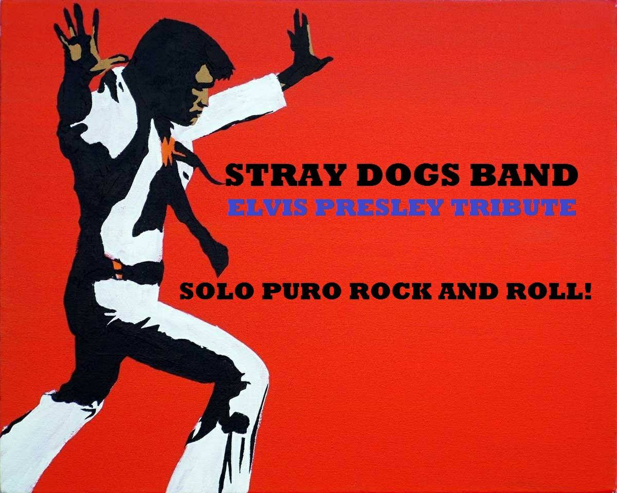 STRAY DOGS BAND - Elvis tribute