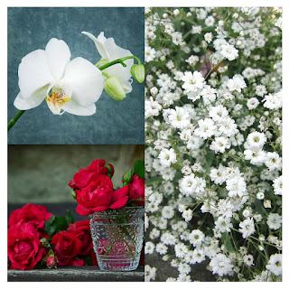 Flores durante todo el año