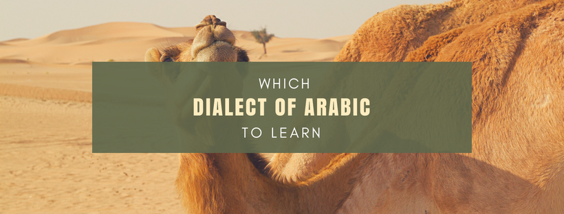 Which Dialect of Arabic to Learn