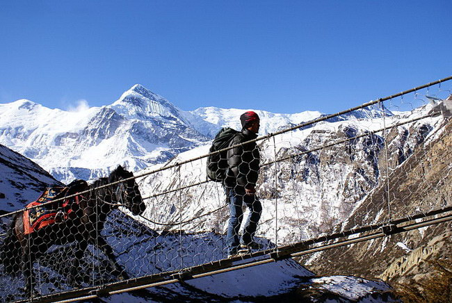 Xvlor.com Annapurna Circuit trek to explore spectacular panoramas of Himalayas