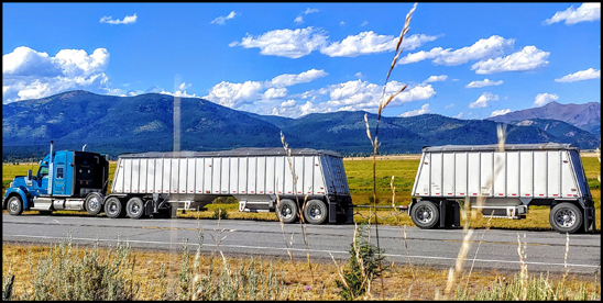 Pocock Trucking Kenworth W990