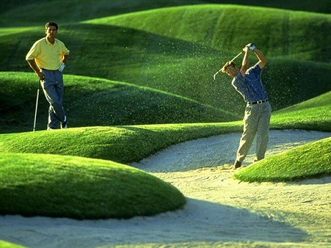 Kèo hay cho môn thể thao golf dành cho giới nhà giàu
