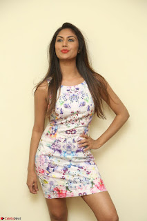 Nishi Ganda stunning cute in Flower Print short dress at Tick Tack Movie Press Meet March 2017 033.JPG