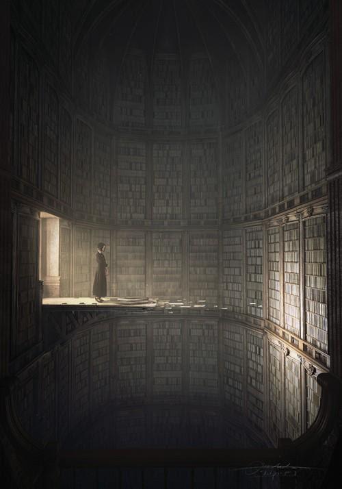 Meme sobre una biblioteca irreal