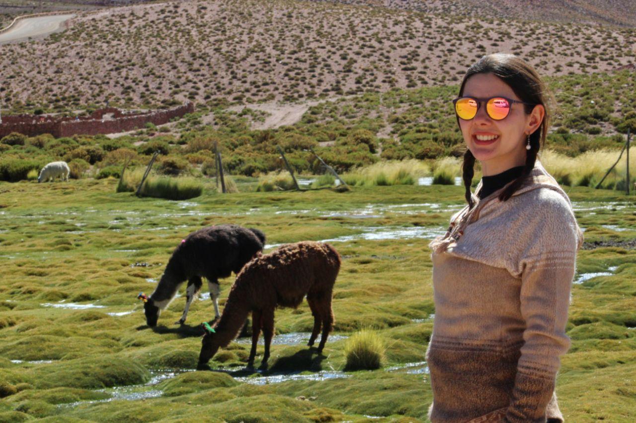 Animais no Vado del Rio Putana.