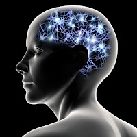 Bir kafa modelindeki beyin aktiviteleri