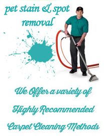 http://carpetcleaningplano-tx.com/contact-us.html