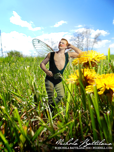 Pixie Hill Garden Faerie Fairy - Nichola Battilana