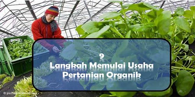 Usaha Pertanian Organik