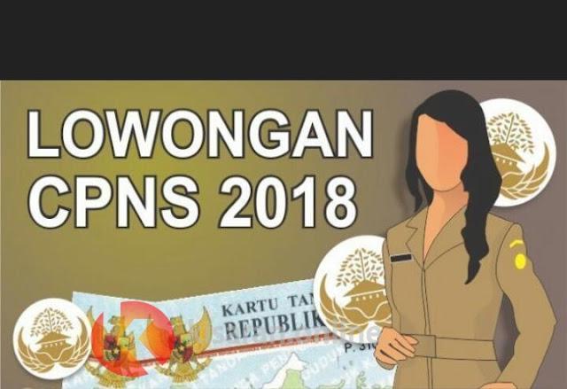 Penerimaan CPNS Dibuka Akhir Juli 2018, Inilah yang Wajib Diketahui Calon Pelamar