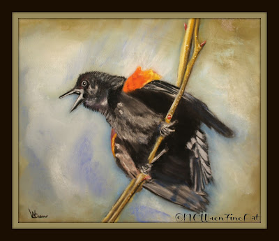 red winged black bird pastel painting ncwren 30in30