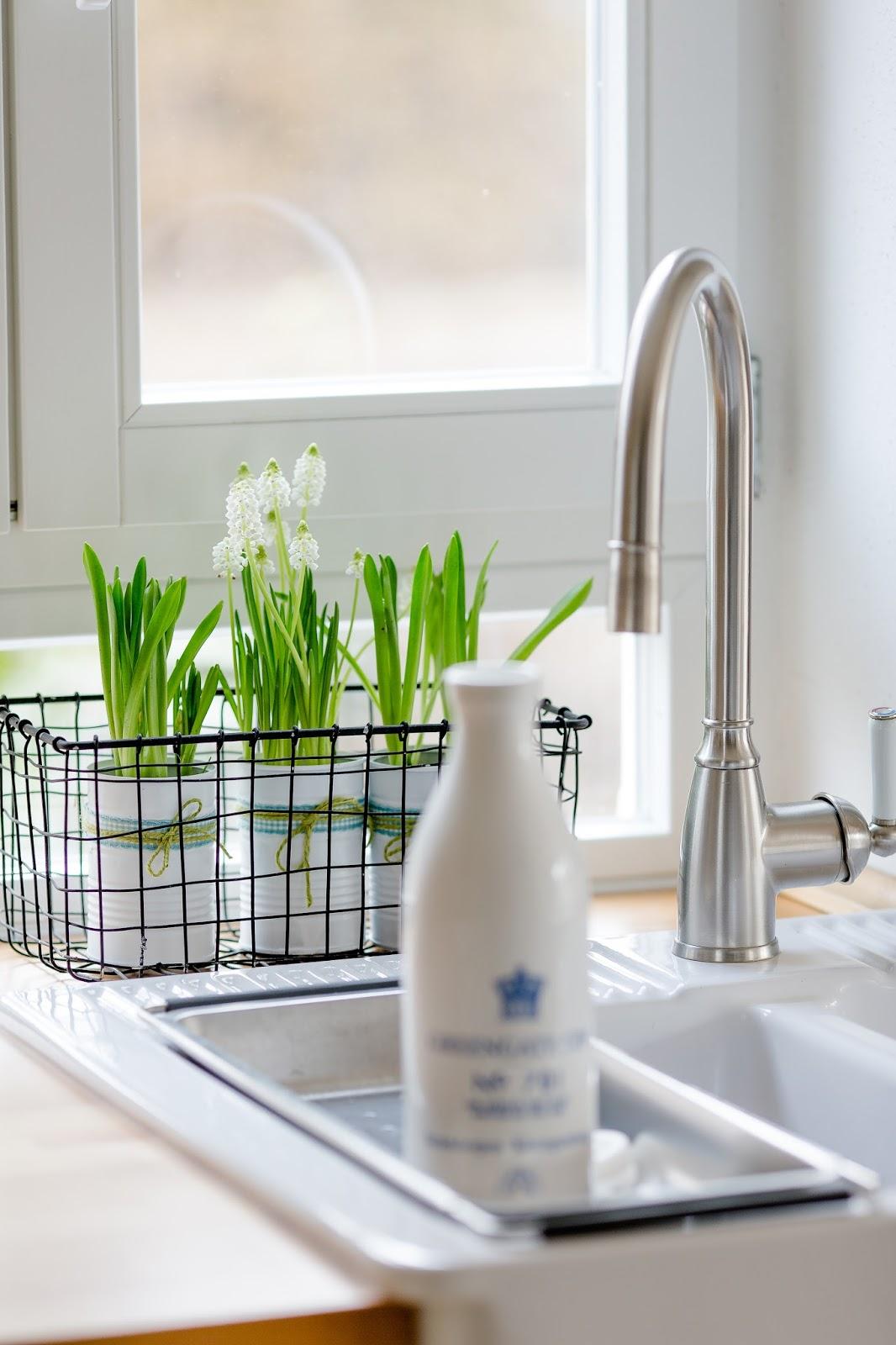Alle Jahre wieder Frühjahrsputz in der Küche oder 10  ~ Geschirrspülmaschine Zitronensäure