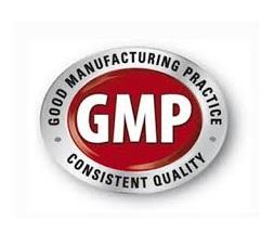 GMP Errors
