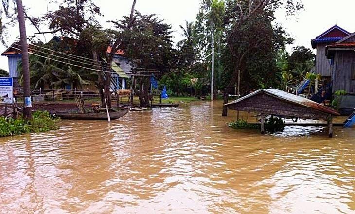 Ibadah Qurban Dengan eQurban Di Kemboja Indonesia Mekah